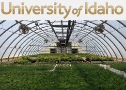 University of Idaho Pitkin Nursery
